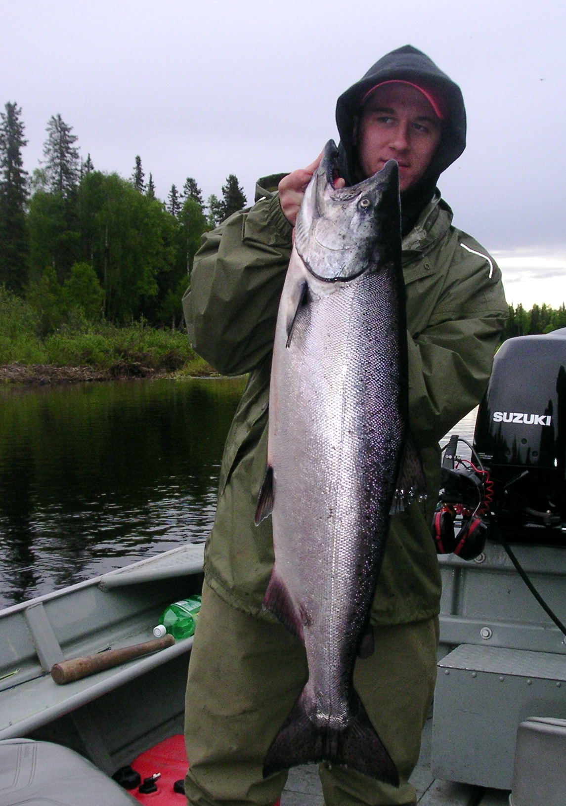 Alaska king salmon fishtale river guides 907 746 2199 for Alaskan salmon fishing